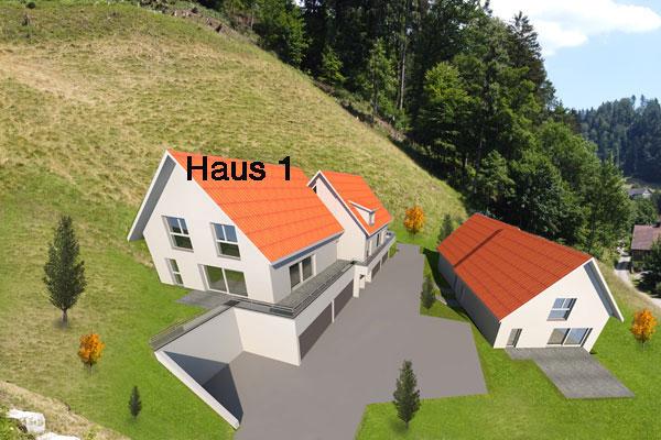 Haus 1 Fischenthal-Steg