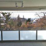 Balkon mit Sicht ins die Natur
